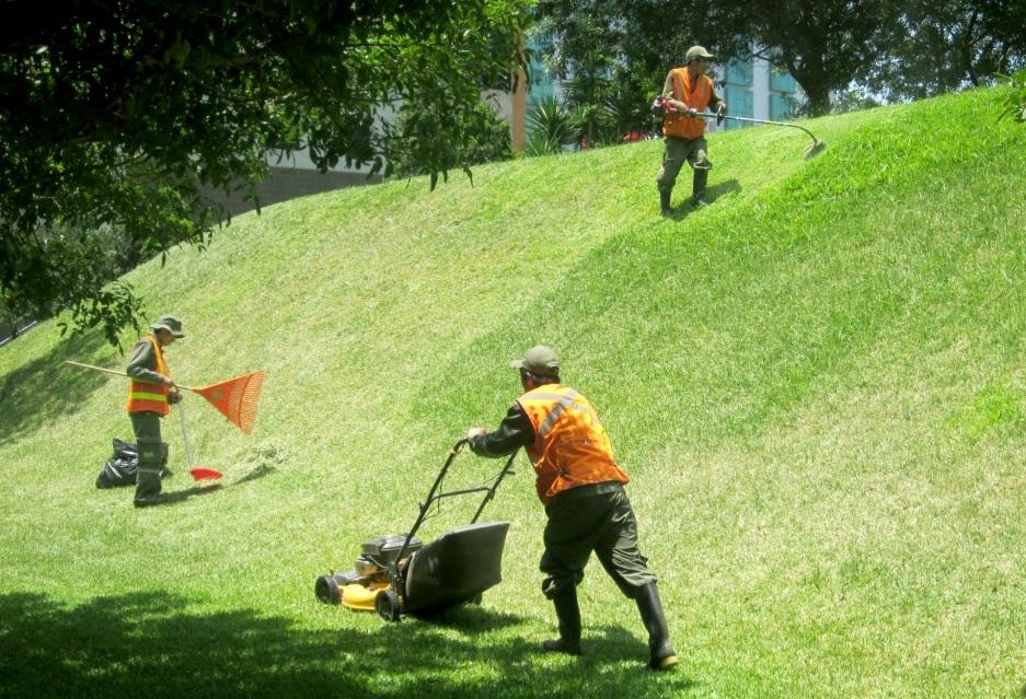 Jardiner a en cusco san antonio for Mantenimiento de jardines