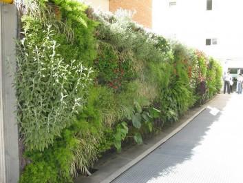 muros-verdes-10